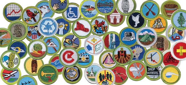 merit badge image
